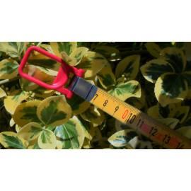 Vložka do pásma BMI 30m Isolan, odsazení C.