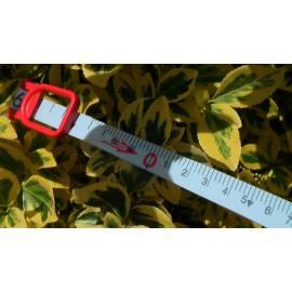 Vložka do pásma BMI plast 30m, odsazení A.